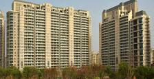 6400sqft LUXURY APARTMENT IN DLF MAGNOLIAS