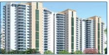 Residential Apartment for Rent in the Close North, Sector-50 Gurgaon