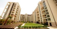 4 BHK LUXURIOUS APARTMENT ON LEASE IN HIBISCUS