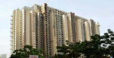 5 Bhk Luxurious Apartment On Lease In DLF Magnolias