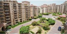 3+1 Bhk Luxurious Apartment On Lease In Beverly Park - I