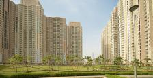 3 Bhk Luxurious Apartment Available On Rent In DLF park Place