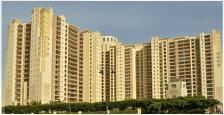 3400 Sq.Ft. Luxurious Apartment Available For Rent In DLF The Summit