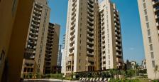 3900 Semi Furnished 4 Bhk Apartment For Rent in Palm Springs, Golf Course Road, Gurgaon