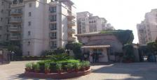 4200 Sq.Ft. Luxurious Pent House Available On Rent In Beverly Park, Gurgaon