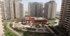 3293 Sq.Ft. Penthouse Available For Rent In Ambiance Lagoon, Gurgaon