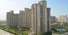 2650 Sq.Ft. 3 Bhk Residential Apartment available for Sale In DLF Hamilton Court