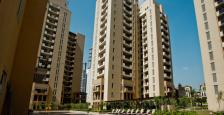 4200 sqft Semi Furnished 4 Bed Room Apartment Available for Rent in Emaar The Palm Springs Golf Course Road Gurgaon.