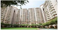 Apartment floors DlF5 welington estate2 in gurgao phase5