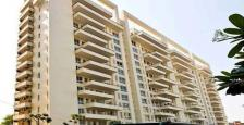 Semi Furnished 4 BHK+Servant Luxurious Apartment For Rent in MGF The Villas, MG Road Gurgaon