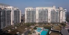 4BHK Semi Furnished apartments available on Rent In DLF Aralias Sector 54 Golf Course Road, Gurgaon