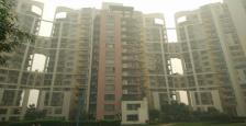 Fully Furnished Apartment for Rent in The close south, Nirvana Country, Golf course Ext. Road, Sector-50, gurgaon