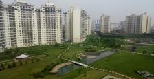 3 Bhk Semi-Furnished Apartment Available For Rent in Central Park-2 Sohna Road, Sec-48, Gurgaon