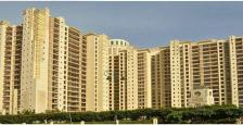 Residential Apartment for Rent in DLF The Summit, DLF CITY PHASE V, Gurgaon