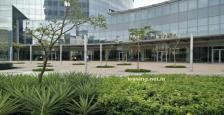 7000 Sq.Ft. Commercial Office Space Available For Lease In One Horizon Centre 2 Gurgaon