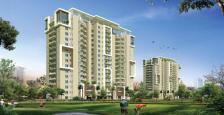 Unfurnished 3 BHK + Servant Apartment Sector 81 Gurgaon