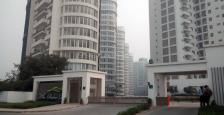 Available 4BHK Luxury Apartments For lease In Emaar palm Drive , Gurgaon