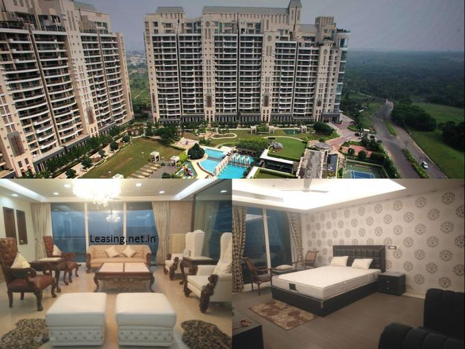 DLF Magnolias 6400 Sq.Ft. 4 Bhk Furnished Apartment Lease Golf Course Road Gurgaon