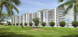 Caitriona  DLF Phase 3, Sector 24 Gurgaon